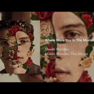 Shawn Mendes - Where Were You In The Morning?